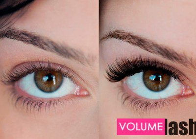Volume Lashes | 6D